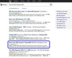 Top 10 SEO Experts NY Bing