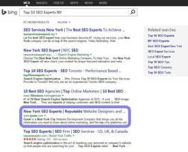 Top 10 SEO Experts NY Bing