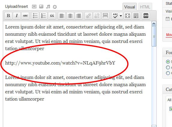 WordPress-Em